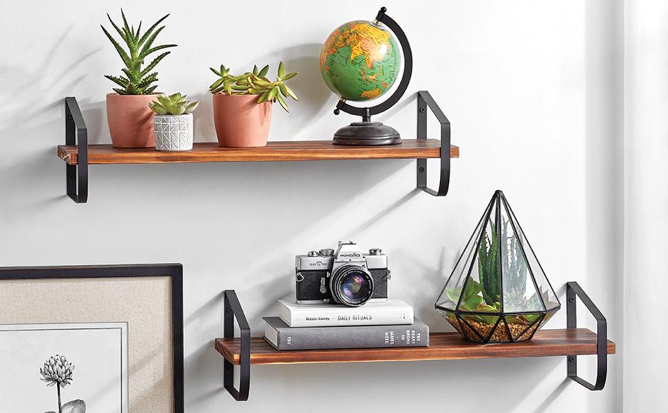 black and walnut floating shelves on wall holding plants, globe, camera, books
