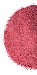 Organic Blueberry Powder by food to live