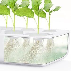 hydroponics growing system indoor plants indoor herb garden kit herb planters for indoor plants