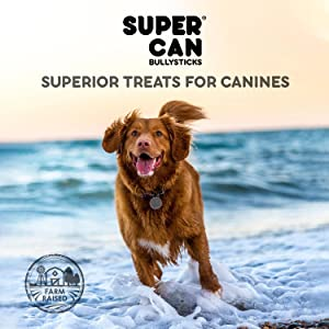 SuperCan Bully Sticks Superior treats for canines supercan puppies bully sticks odor free