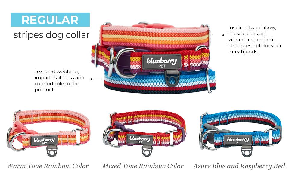 multi-colored stripe collection - 6