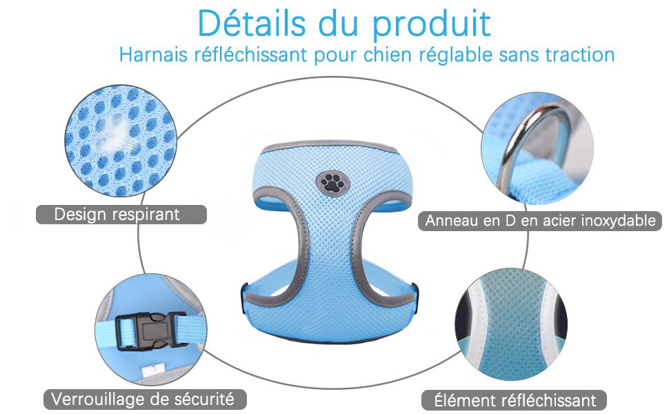 Produkt Details
