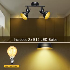 incl bulbs