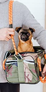 Roverlund Small Size Pet Carrier with Brussels Griffon