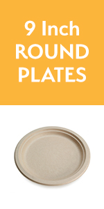 9inch plate