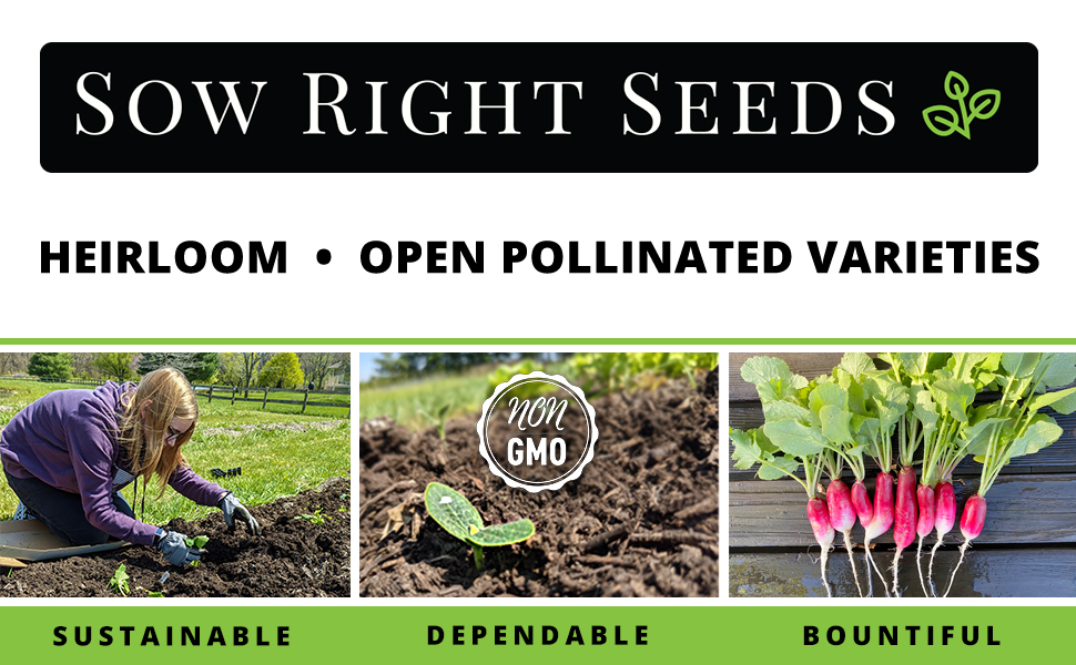 Sow Right Seeds. heirloom open pollinated varieties. sustainable dependable bountiful.