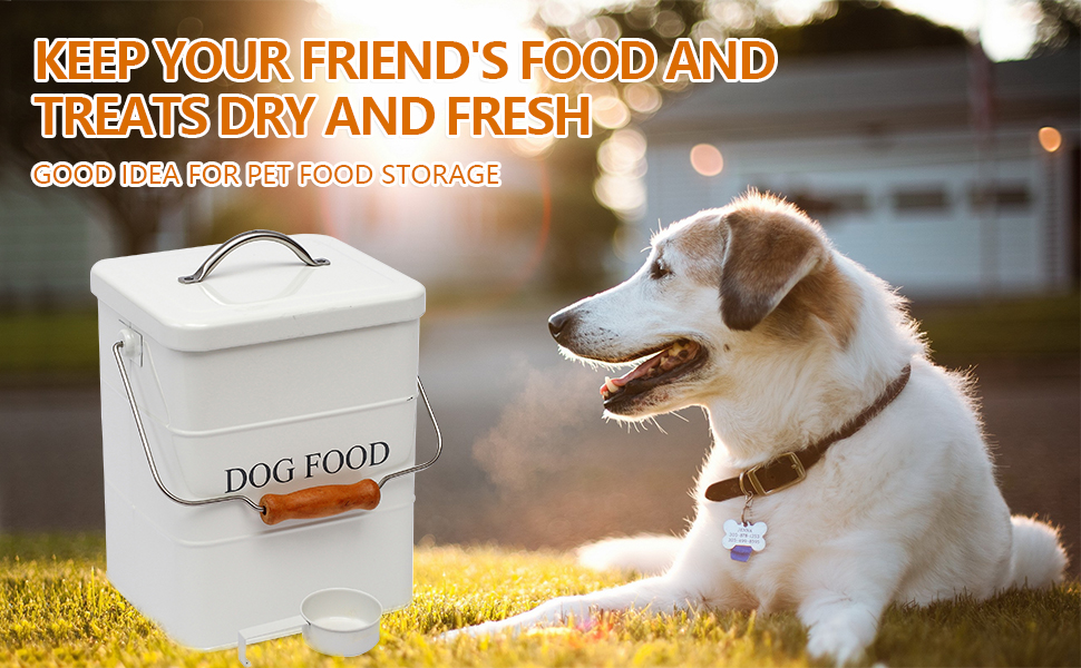 dog treats container airtight