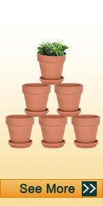 4 inch clay pot