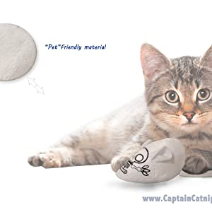 mouse catnip toy