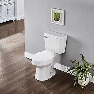 single flush
