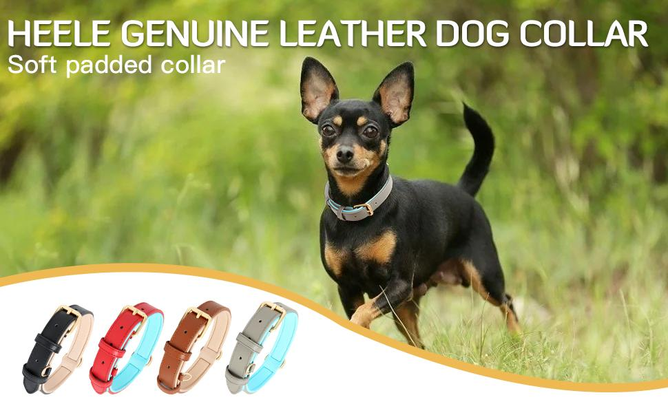 HEELE Genuine Leather Dog Collar