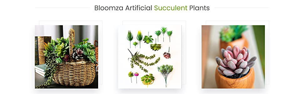 Bloomza Artificial Succulent Plants