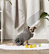 Little dog wrapped in a pet towel