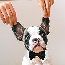 Koolmox dog bow ties for tux