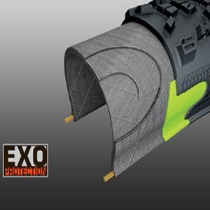 Maxxis EXO puncture protection image rendering.