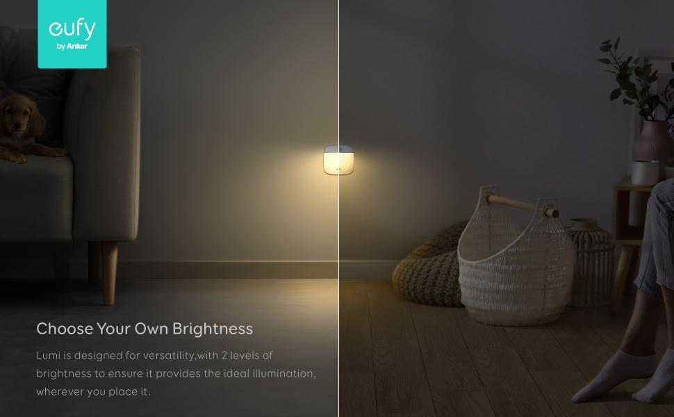 Choose your Own Brightness