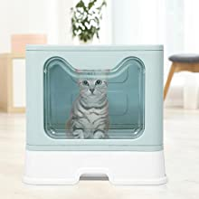 large space cat litter box