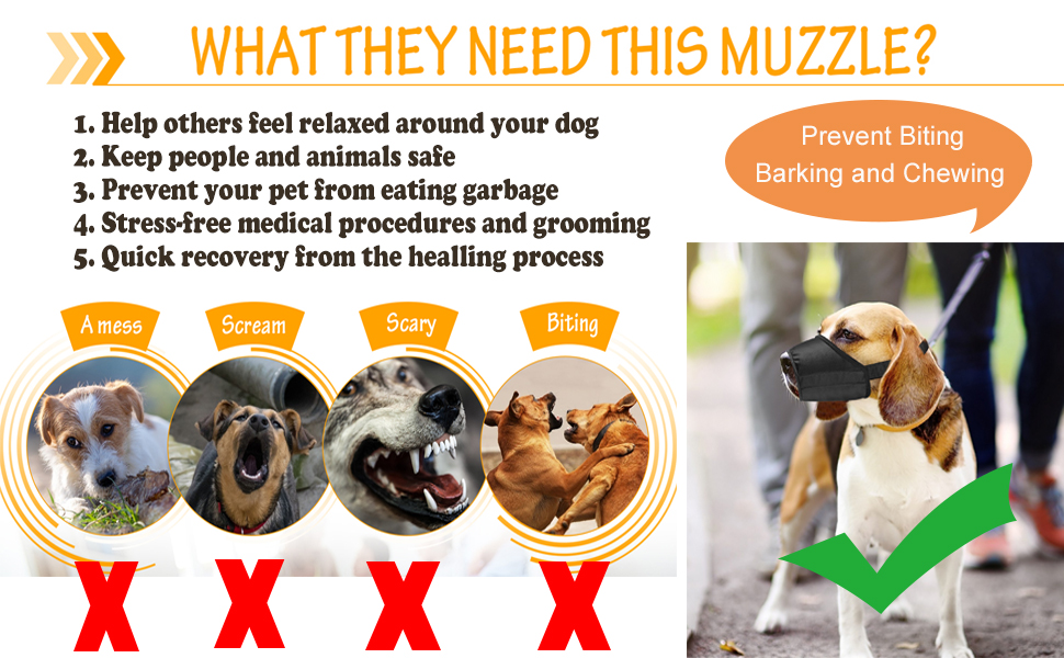 Prevent Biting Barking and Chewing
