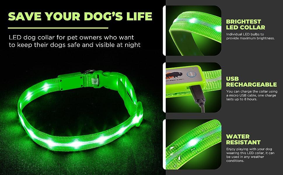 Save Your Dog's Life