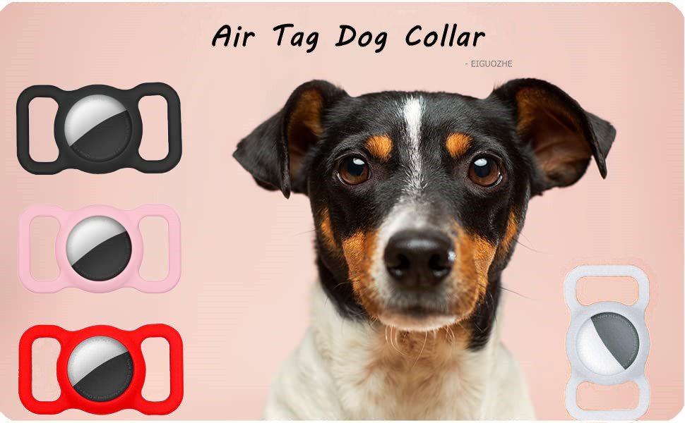 air tag dog collar