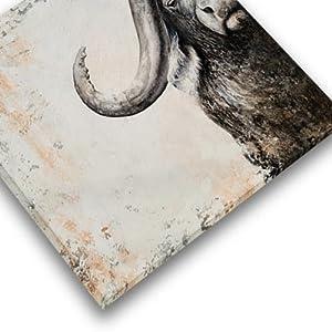 Gallery Wrap Animal Wall Art