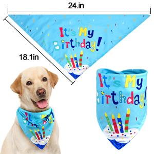 dog birthday bandana