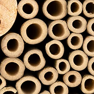 Filling materials for insect hotel