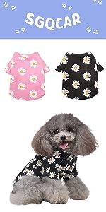 Daisy dog shirts