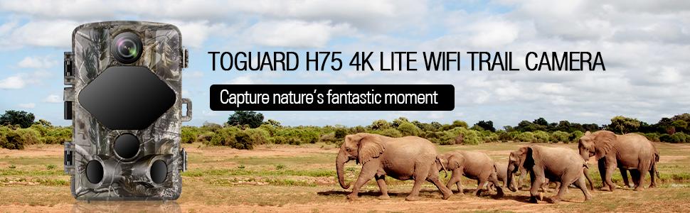 H75 4K wifi trail camera