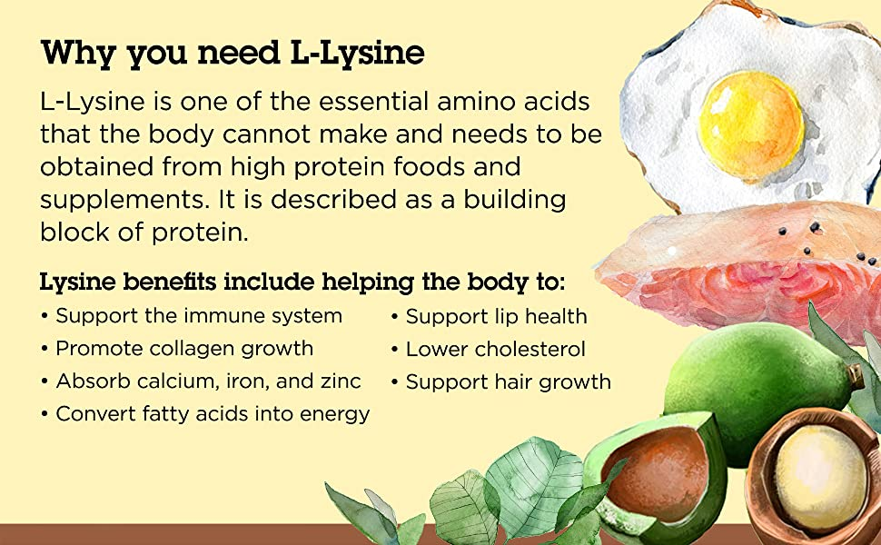 Why you need L-Lysine: Image describes the benefits of L-Lysine