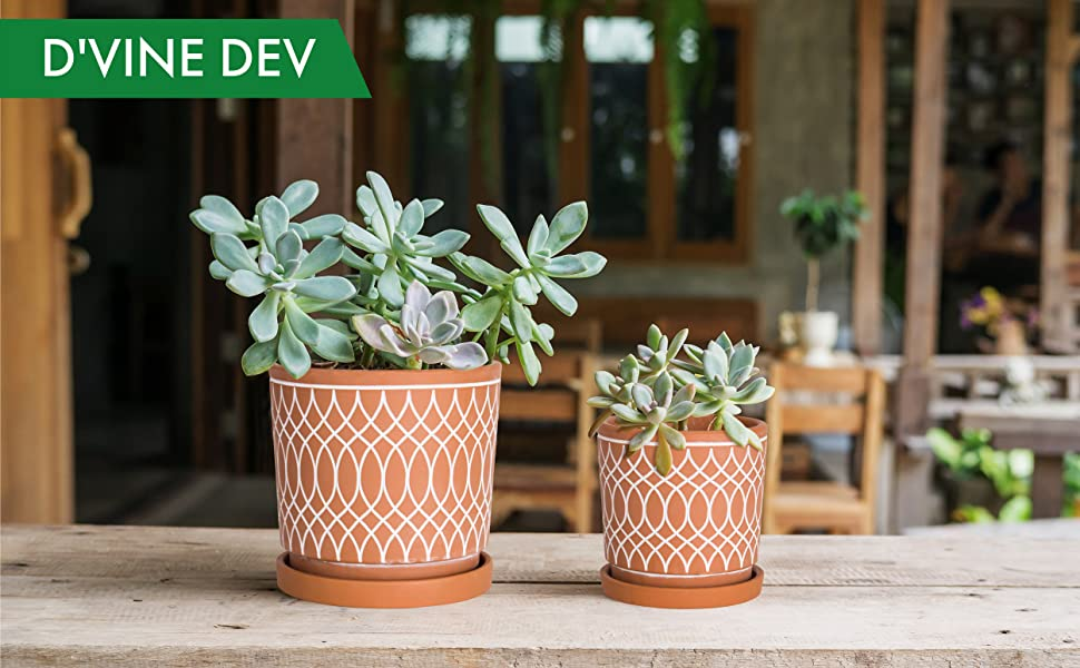 Line Pattern Design, 4 Inch and 6 Inch, Planter Pot with Drainage Hole and Tray