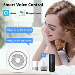 Works with Alex and Google Home