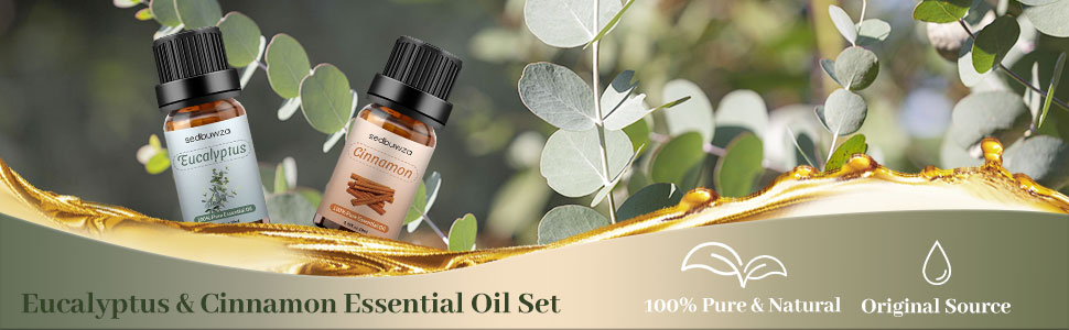 Eucalyptus Cinnamon  essential oils for candle making essential oils for skin fragrance Oil