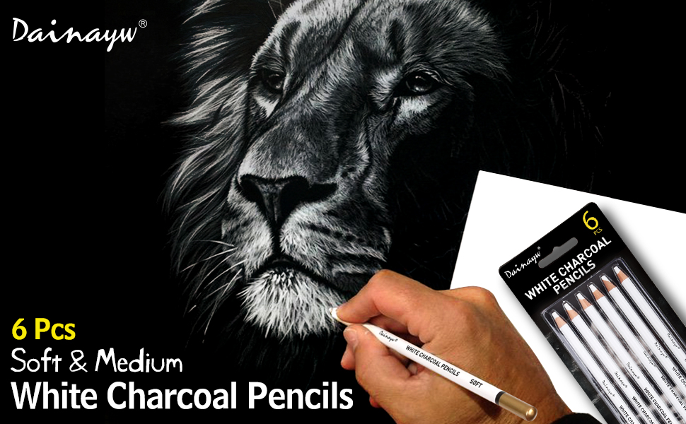 White Charcoal Pencils
