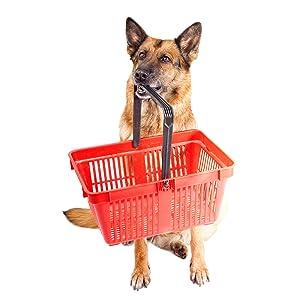 Dog holding a shopping basket