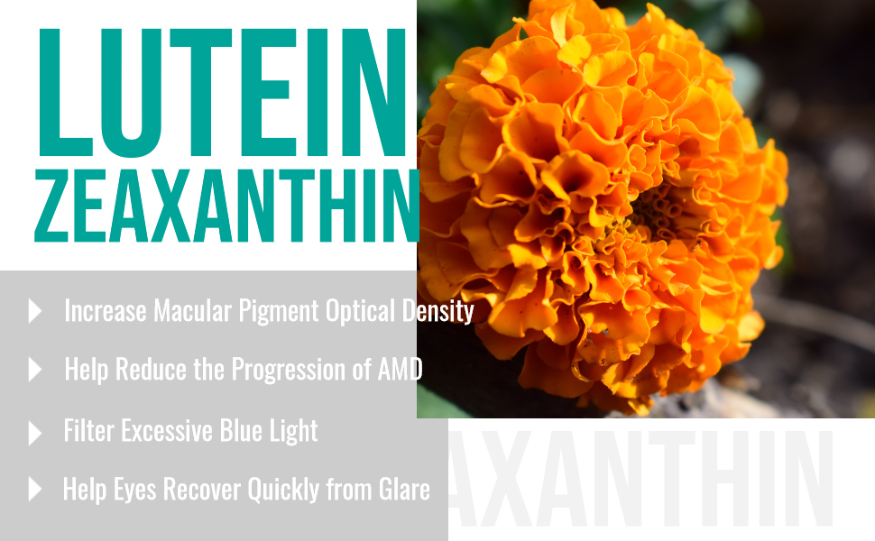 lutein 40mg with zeaxanthin 120 softgels blue light night vision vision acuity fine details glare