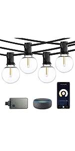 SUNTHIN smart string lights g40