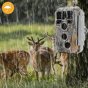 Hunting wildlife camera