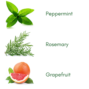 Peppermint, Rosemary and Grapefruit Essential Oils