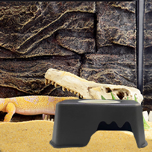 Reptile hiding box04