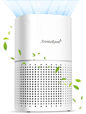 Room Air Purifier with True HEPA Filter