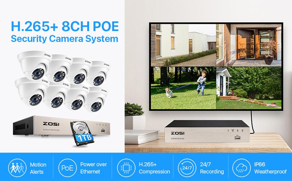 8EN-4182W8S-10 PoE security cameras system