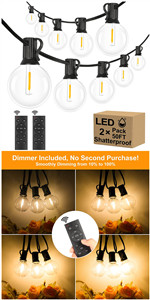 Outdoor G40 Globe String Lights with Remote