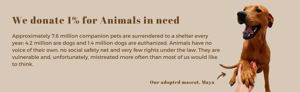 donating to animals in need