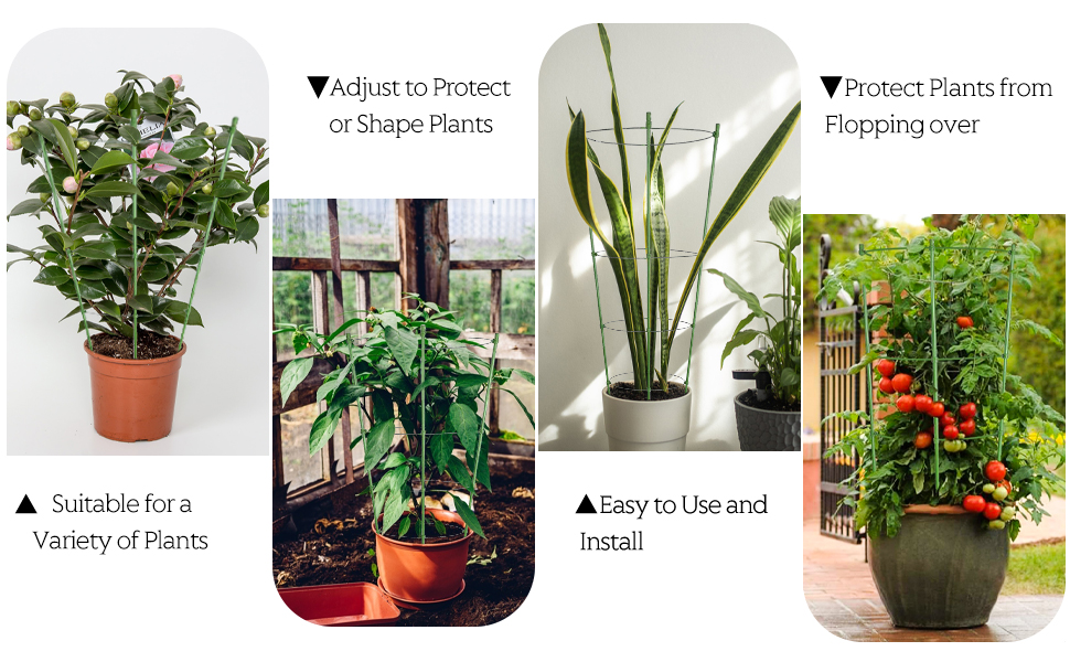 plant support stakes
