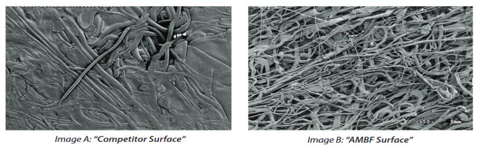 SEM Microscopic Image