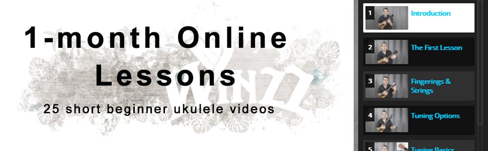 1 month online lessons