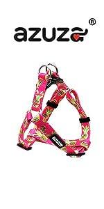 basic step in dog harness