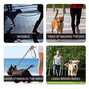 why do we need a good dog leash