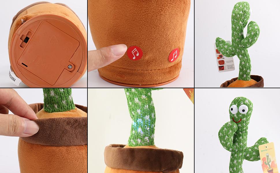 wiggle dancing cactus